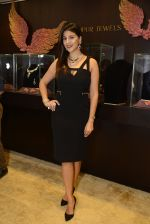 at Jaipur Jewels Myga launch on 3rd Aug 2016 (18)_57a2ba4c71bb0.JPG