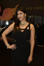 at Jaipur Jewels Myga launch on 3rd Aug 2016 (19)_57a2ba4d3155b.JPG