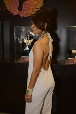 at Jaipur Jewels Myga launch on 3rd Aug 2016 (50)_57a2b9fb5b673.JPG