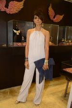 at Jaipur Jewels Myga launch on 3rd Aug 2016 (51)_57a2b9fc1aef8.JPG