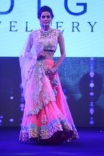 Model walk the ramp for IIJS show in Mumbai on 5th Aug 2016 (38)_57a56c1d4bf30.JPG