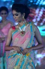 Model walk the ramp for IIJS show in Mumbai on 5th Aug 2016 (77)_57a56c49856b6.JPG