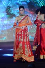 Model walk the ramp for IIJS show in Mumbai on 5th Aug 2016 (81)_57a56c4fcbfd1.JPG