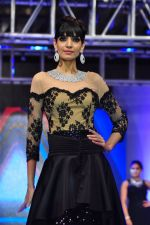 Model walk for a Jewellery show on 6th Aug 2016 (127)_57a7399599be3.JPG