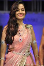 Model walk for a Jewellery show on 6th Aug 2016 (51)_57a7393ab1c42.JPG