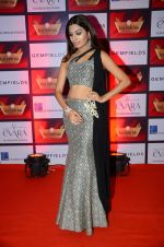 at Retail Awards in Mumbai on 6th Aug 2016 (47)_57a748796c8e4.JPG