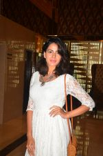 Kirti Kulhari at Pink trailer launch in Mumbai on 9th Aug 2016 (114)_57a9e9466f610.JPG