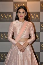 Aachal Kumar at SVA Autumn Winter collection launch on 9th Aug 2016