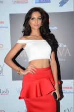 at Miss Diva Event on 10th Aug 2016 (41)_57ac46f25039f.JPG