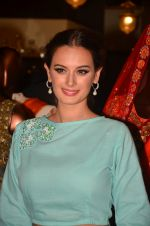Evelyn Sharma at Jhelum store_s National Handloom day celebrations on 11th Aug 2016 (20)_57ad98e142bbe.JPG
