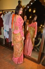 at Jhelum store_s National Handloom day celebrations on 11th Aug 2016 (23)_57ad97caf3081.JPG