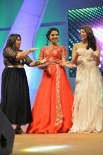 Santosham South India Film Awards 2016 on 15th Aug 2016 (49)_57b2bb6079dca.JPG