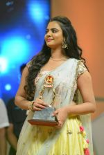 Santosham South India Film Awards 2016 on 15th Aug 2016 (55)_57b2bb7014c35.JPG