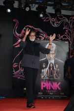 Amitabh Bachchan at Pink promotions in Umang fest on 17th Aug 2016 (112)_57b571b7d768d.JPG