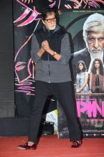 Amitabh Bachchan at Pink promotions in Umang fest on 17th Aug 2016 (114)_57b571ba607c3.JPG
