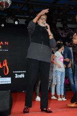 Amitabh Bachchan at Pink promotions in Umang fest on 17th Aug 2016 (145)_57b571d88034d.JPG