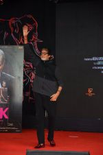 Amitabh Bachchan at Pink promotions in Umang fest on 17th Aug 2016 (85)_57b5719621d5c.JPG