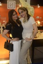Farah Ali Khan on day 2 of JOYA Exhibition on 17th Aug 2016 (205)_57b56fb1ac52a.JPG