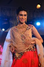 Model at bridal show on 19th Aug 2016 (73)_57ba9c07849df.JPG
