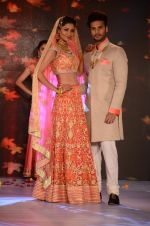 Model at bridal show on 19th Aug 2016 (84)_57ba9c2f72ebe.JPG