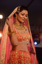 Model at bridal show on 19th Aug 2016 (85)_57ba9c333e3f9.JPG