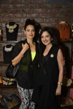 Amy Billimoria and Zevadhi Jewels launch on 22nd Aug 2016 (12)_57bc0c83bf013.JPG