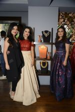 Amy Billimoria and Zevadhi Jewels launch on 22nd Aug 2016 (4)_57bc0c79f0aad.JPG