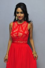Poojasri at Saiya Re Album Launch (183)_57bd73b20a965.JPG
