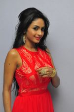 Poojasri at Saiya Re Album Launch (186)_57bd73c2166f3.JPG