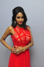 Poojasri at Saiya Re Album Launch (237)_57bd751536849.JPG