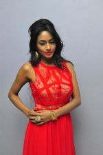 Poojasri at Saiya Re Album Launch (238)_57bd7519dc341.JPG