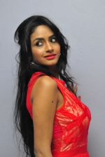 Poojasri at Saiya Re Album Launch (259)_57bd756f8dbb6.JPG