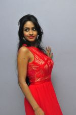Poojasri at Saiya Re Album Launch (261)_57bd757505f74.JPG