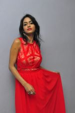 Poojasri at Saiya Re Album Launch (265)_57bd757f66aaa.JPG