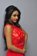 Poojasri at Saiya Re Album Launch (277)_57bd75a11d492.JPG
