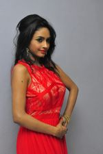 Poojasri at Saiya Re Album Launch (278)_57bd75a41e8b2.JPG