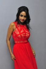 Poojasri at Saiya Re Album Launch (279)_57bd75a6be51a.JPG