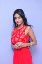 Poojasri at Saiya Re Album Launch (287)_57bd75bede3ab.JPG