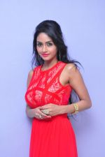 Poojasri at Saiya Re Album Launch (288)_57bd75c190b3b.JPG