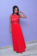Poojasri at Saiya Re Album Launch (300)_57bd75e8ada37.JPG