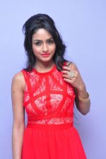 Poojasri at Saiya Re Album Launch (304)_57bd75f78ff78.JPG