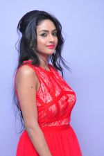 Poojasri at Saiya Re Album Launch (307)_57bd7603f0036.JPG