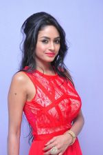 Poojasri at Saiya Re Album Launch (309)_57bd760a87cf0.JPG
