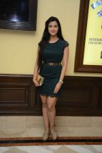 Subha Rajput at Sunshine music travel press meet on 24th Aug 2016 (10)_57bebabedb781.jpg