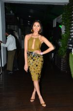 Perina Qureshi at Shivan Naresh post bash in Asilo on 27th Aug 2016 (14)_57c2d503b018c.JPG
