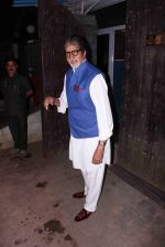 Amitabh Bachchan snapped in Juhu on 29th Aug 2016 (1)_57c54fb094190.JPG