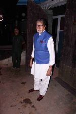 Amitabh Bachchan snapped in Juhu on 29th Aug 2016 (2)_57c54fb27d1a2.JPG