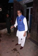 Amitabh Bachchan snapped in Juhu on 29th Aug 2016 (3)_57c54fb4801fb.JPG