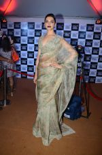 Deepika Padukone at Sabyasachi Show Grand Finale at Lakme Fashion Week 2016 on 28th Aug 2016 (80)_57c5441ca97af.JPG