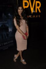 Daisy Shah at Don_t Breathe premiere on 30th Aug 2016 (40)_57c6833525cd8.JPG